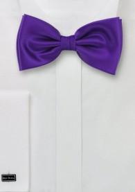 Fliege dunkles violett