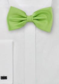 Herren-Schleife einfarbig grün italienische Seide